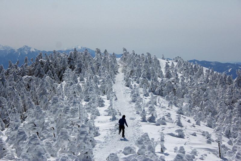 冬の北横岳 樹氷