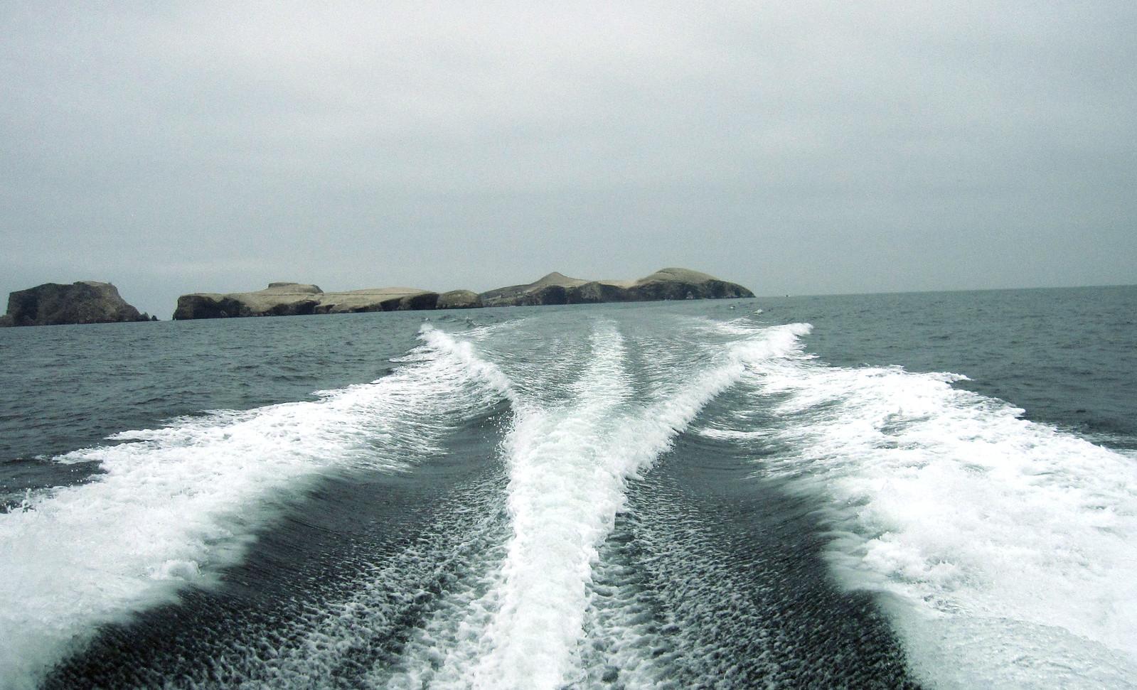 Islas Ballestas 134