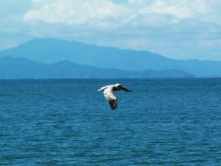 Costa Rica 2006 - 023