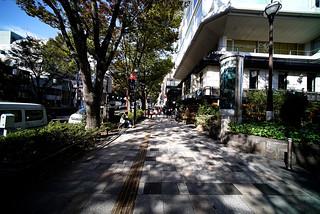Daylight@Omotesando_Tokyo_05