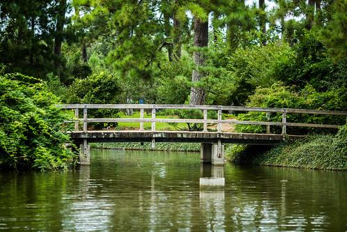 usa green canon garden texas houston vegetation 135mm 5dmarkiii