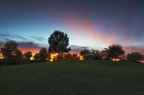 pink blue sunset red arizona orange tree green phoenix grass yellow dusk hill az bluesky phoenixarizona ariz redsunset steeleindianschoolpark jimhankey afsnikkor18200mmdxvr nikond7100