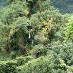 03 Viajfilos en Panama. Canopy en Boquete 22