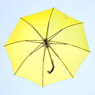 The Umbrella | by zeevveez