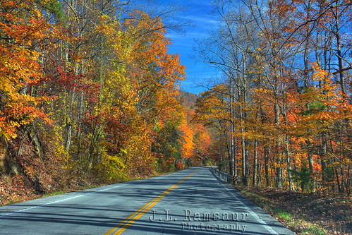 road autumn red sky orange brown fall nature yellow clouds rural landscape outdoors photography photo vanishingpoint nikon highway colorful tennessee fallcolors perspective vivid bluesky pic symmetry autumncolors photograph thesouth roadside roadsideamerica hdr cumberlandplateau ruralamerica 2014 whiteclouds beautifulsky highway70 photomatix fallseason deepbluesky autumndrive bracketed skyabove middletennessee ruraltennessee hdrphotomatix ruralview hdrimaging perspectiverules roanecounty fallinthesouth ibeauty southernlandscape tennesseefall hdraddicted allskyandclouds d5200 rockwoodtn southernphotography screamofthephotographer hdrvillage jlrphotography photographyforgod autumninthesouth worldhdr nikond5200 hdrrighthererightnow engineerswithcameras hdrworlds god'sartwork nature'spaintbrush jlramsaurphotography