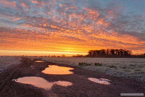 cambridge england sunrise unitedkingdom cambridgeshire stapleford