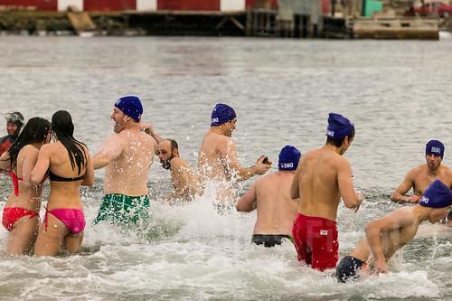 bear nova port swim canon polar scotia 1ds 100400l morien threemilesfinal