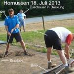 Hornussen 2013