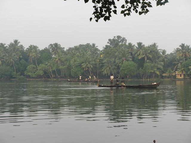Kerala Backwater Backwaters Indian Indien Kollam District (c)
