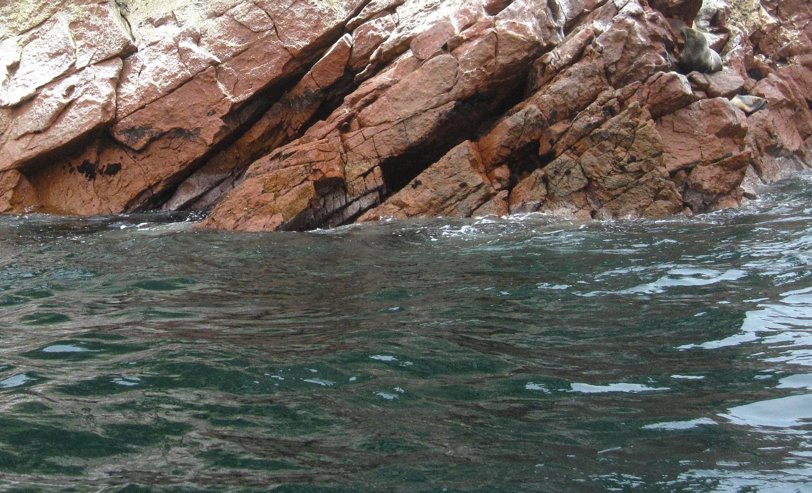 Islas Ballestas 92