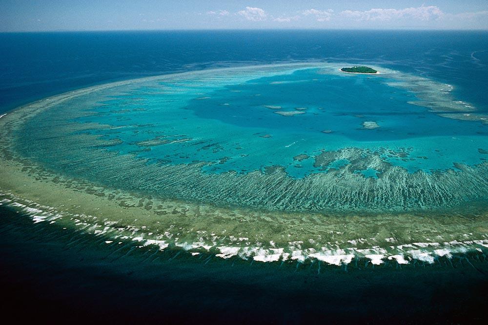 Great Barrier Reef | Great Barrier Reef, Steve Parish | Lock the ...