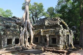 Angkor (Ta Prohm) | by Fathzer