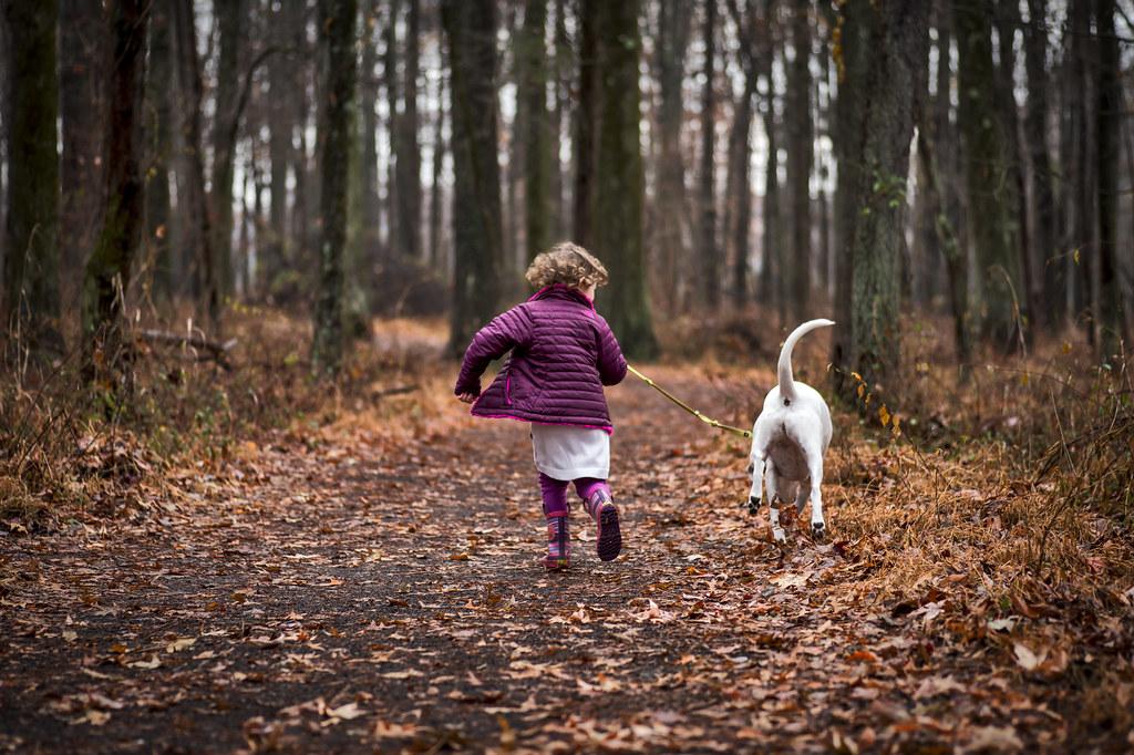 Thanksgiving Run through the Forest