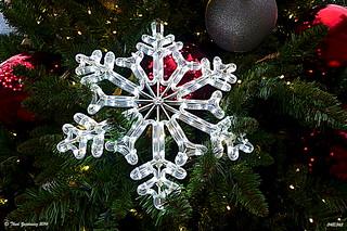 Snowflake -- 'Explored 10 December 2014' | by Thad Zajdowicz