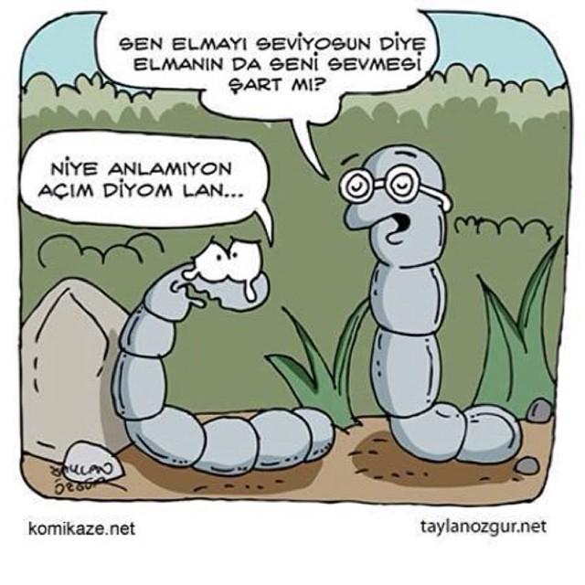 elma #sevmek #kurt #açlık #komik #karikatür #resim #şiirs… | Flickr