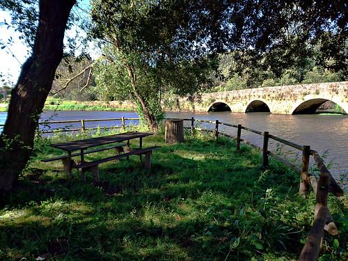 park old bridge trees green nature water picnic medieval lamas aveiro agueda vouga marnel