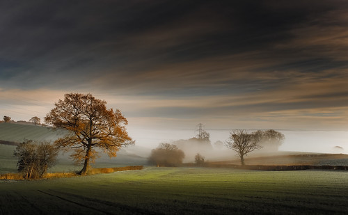 morning november autumn trees light england sky mist color tree green nature beautiful clouds rural canon landscape golden landscapes countryside glow view peaceful gloucestershire fields autumnal treescape canonef2470mmf4lisusm canon6d ericgoncalves