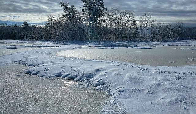 scarborough marsh, maine