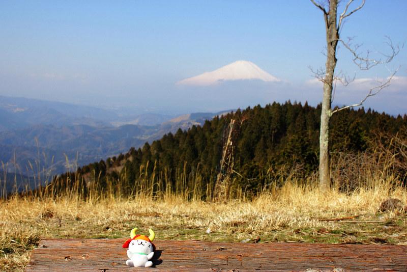 高松山 富士山の展望