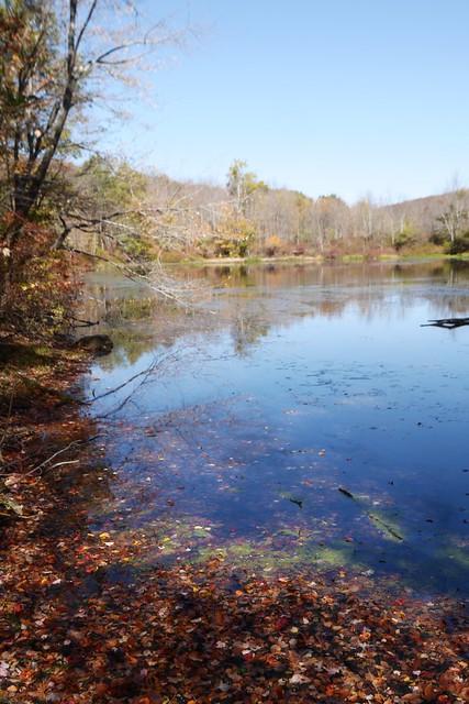 日, 2014-10-12 11:35 - Sterling Forest State Park