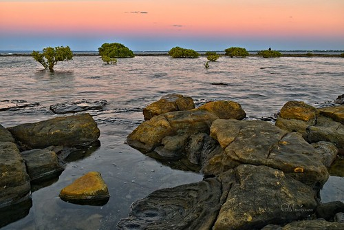 dusk pointvernon queensland seascape