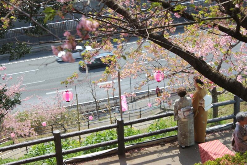 2014-03-16_00117_高松山