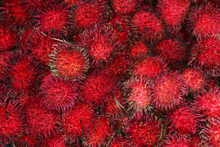 Rambutans (IMG_1109ed_b) | by Denish C