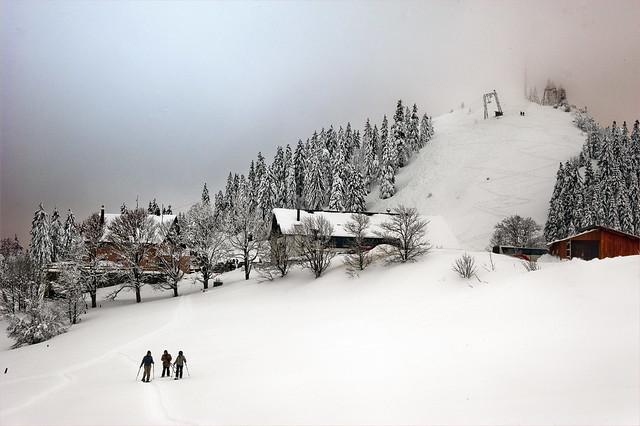 Winter time in Switzerland, Jura mountains. No. 3437.