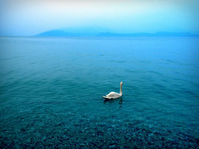 lago - Mantova
