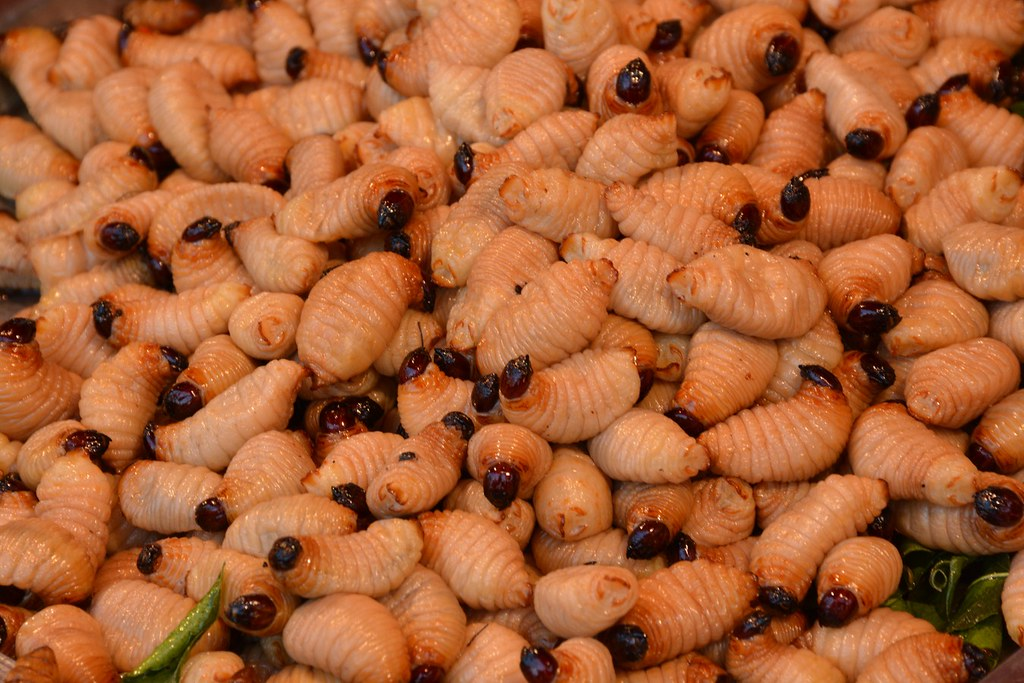 Future Food Insects Krabi Thailand 2015 Paul Arps Flickr