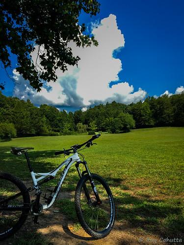 specialized bike bicycle cycle mountainbike gilmer ellijay northgeorgiamountains northgeorgia georgia
