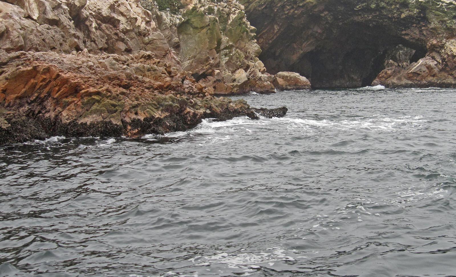 Islas Ballestas 24
