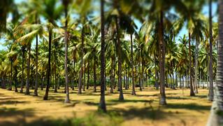 Lombok | by Dagmarita Smulewicz www.uwolnijsiebie.pl