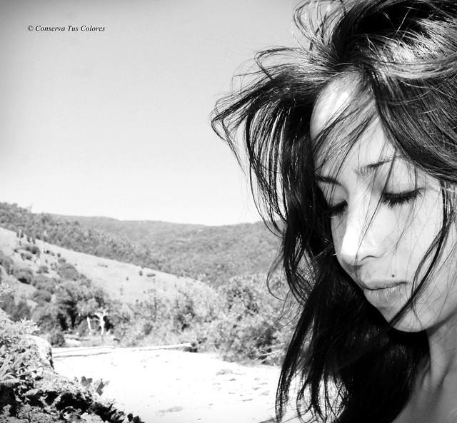 Sentir el viento en un día de verano