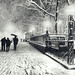 New York City - Winter - Snow Falls on 5th Avenue by Vivienne Gucwa