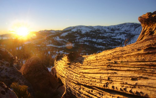 wood winter sunset snow mountains gold golden raw outdoor nevada laketahoe explore hdr mtrose 3xp photomatix fav500 mtroseskitahoe nex6 selp1650