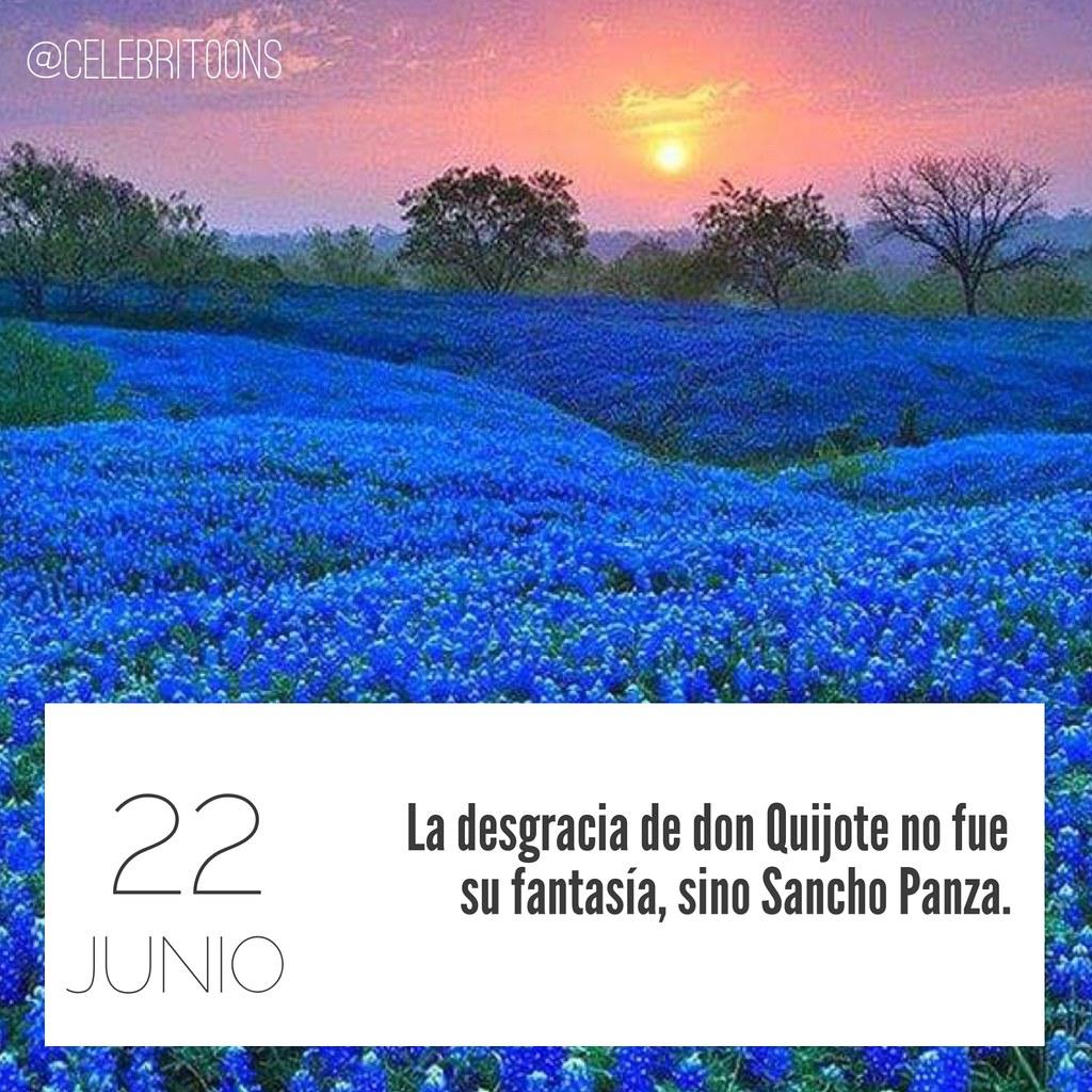 Frase Célebre 2262016 La Desgracia De Don Quijote No Fu