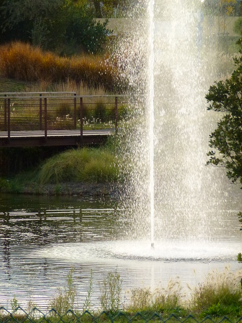 Agde cité de l'eau