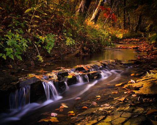trees fall georgia waterfall stream cascade autunm gibbsgarden