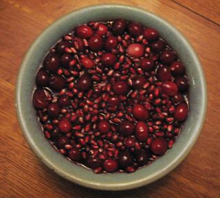 11-24-11-AZ-home-cranberry pomegranite relish   by indigowithstars