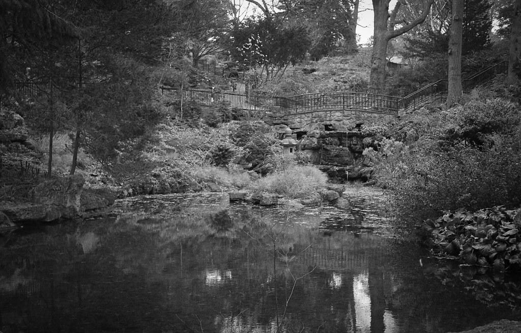 November in High Park
