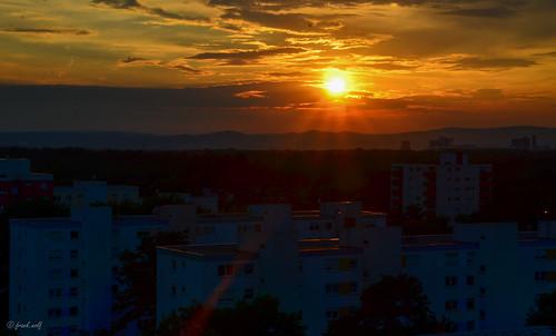 Sonnenuntergang Westend Neu-Isenburg