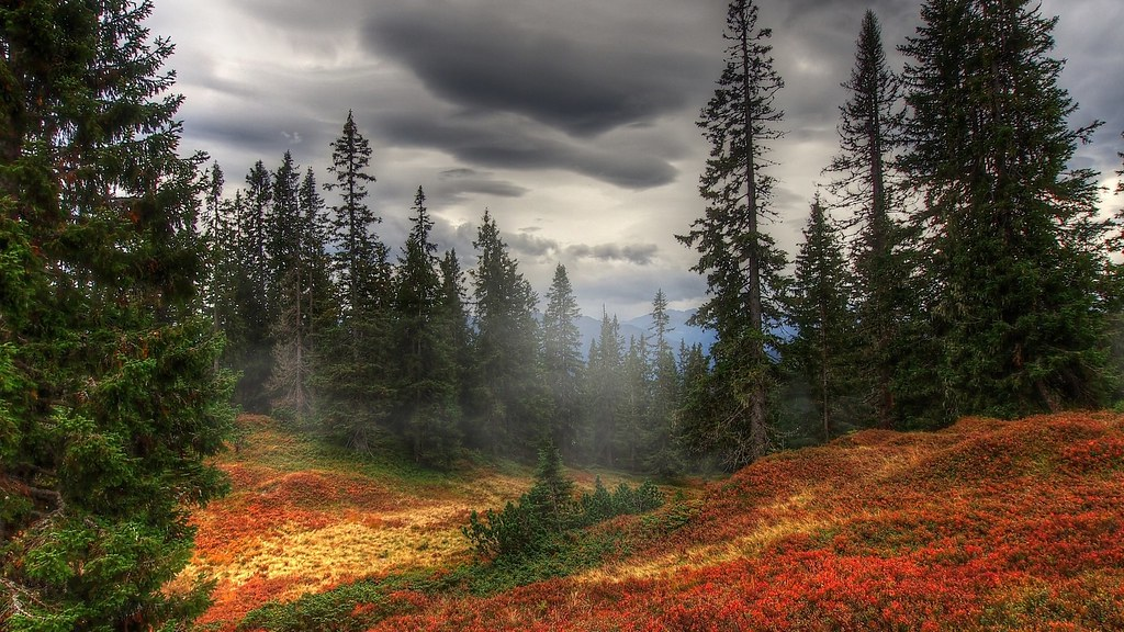 4k Ultra Hd 3840x2160 Nature Wallpaper Systemgrafica Flickr