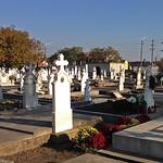 Auf dem Neugässer Friedhof an Allerheiligen 2015