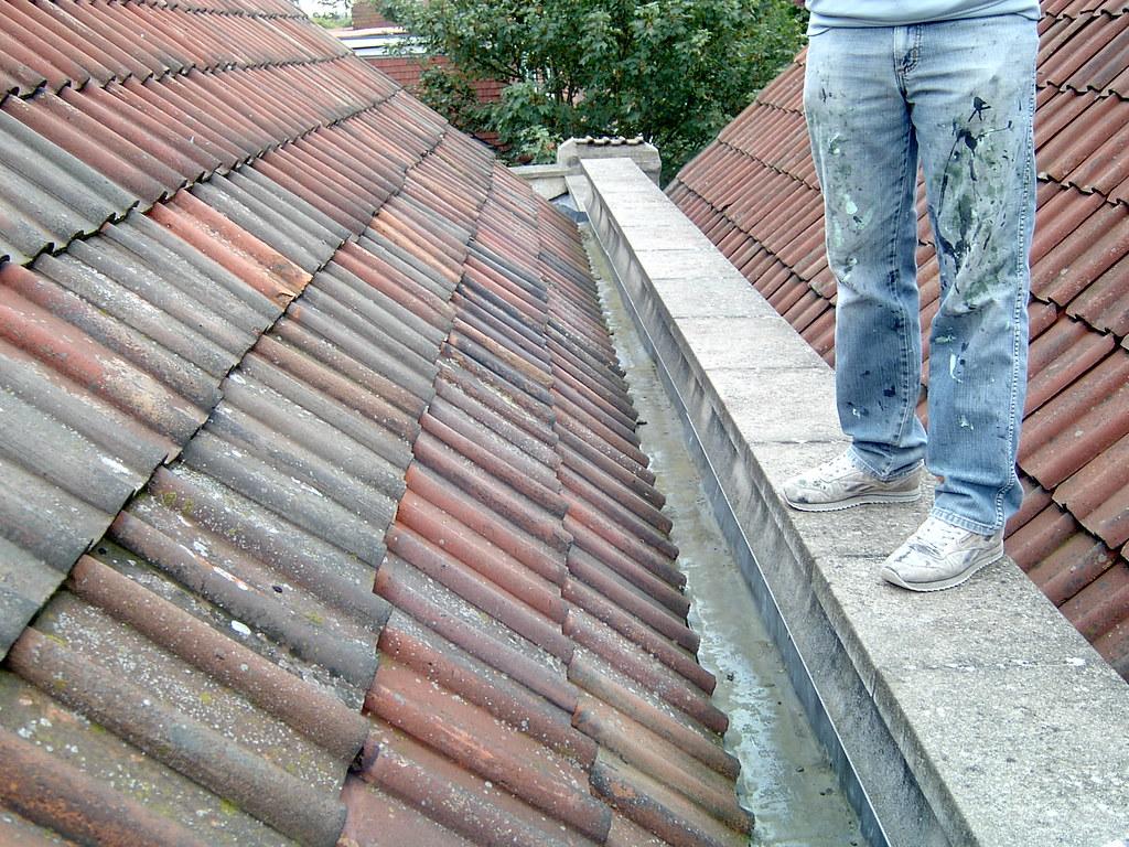 Jennys Roof 003