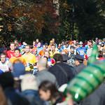 Marathon runners 2014