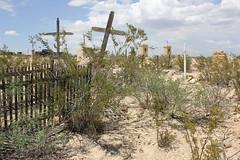 Terlingua Cemetery 4
