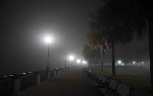 nightphotography travel usa nikon streetlamps southcarolina charleston palmtrees nikkor waterfrontpark d610 heavyfog 24120mmf4gvr