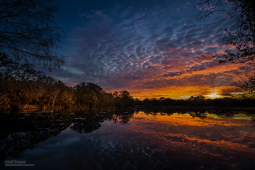 sunrise reflections florida longwood