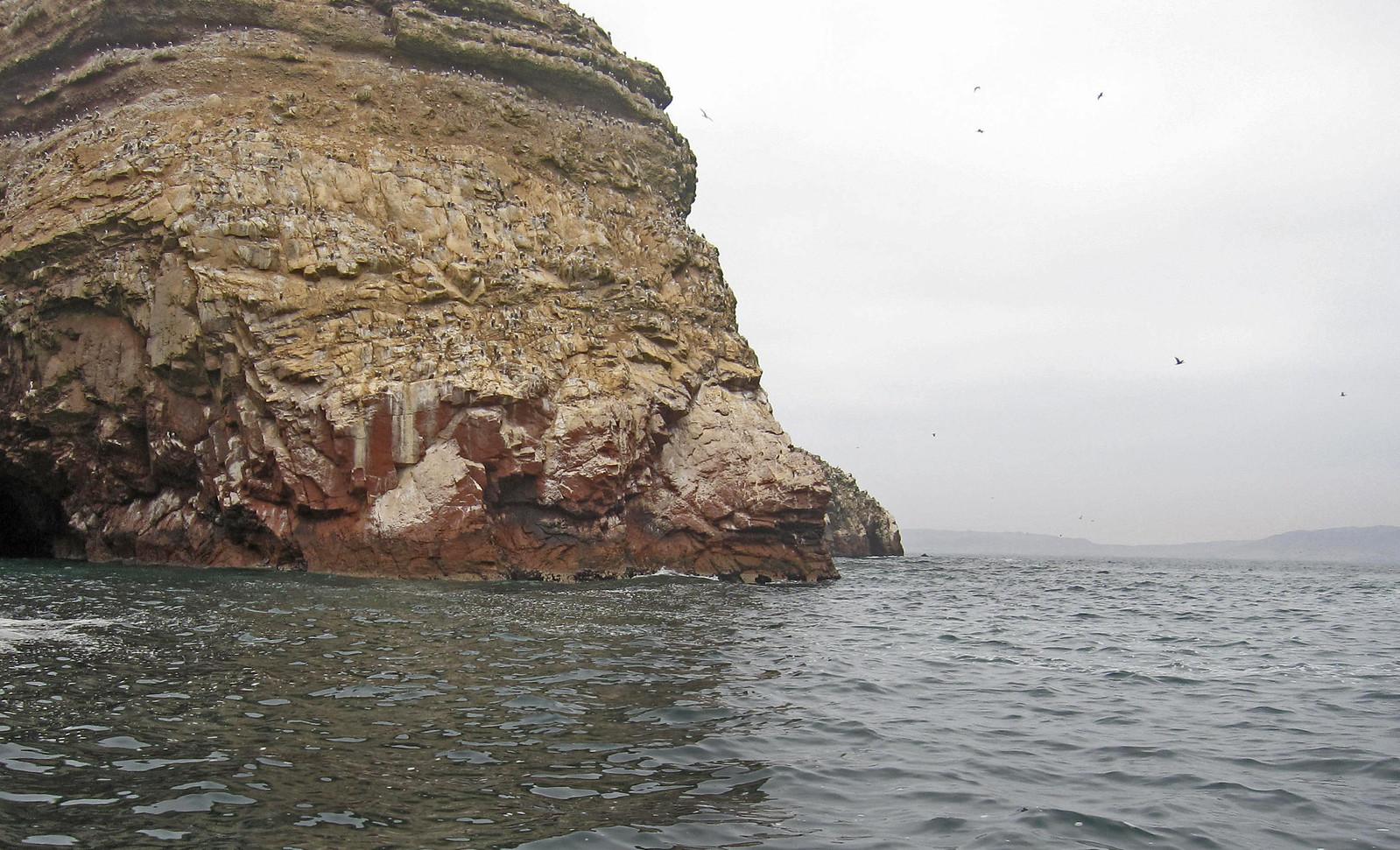 Islas Ballestas 80